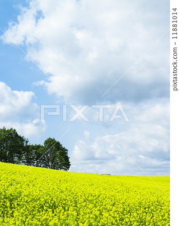 风景_自然 大地 山丘 照片 山丘 山 黑色背景 首页 照片 风景_自然
