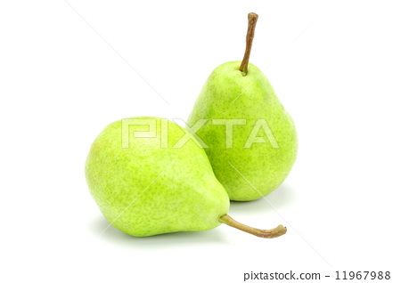 梨 白底 首页 照片 蔬菜_食品 水果 梨 水果 梨 白底  *pixta限定素材
