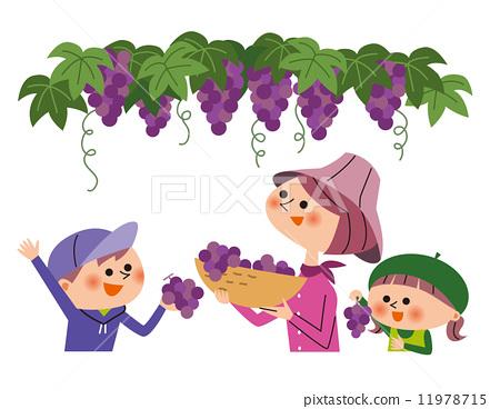 儿童 葡萄采摘 摘水果