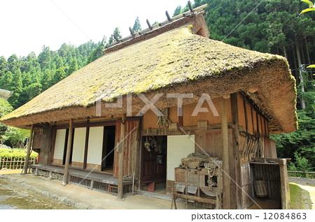 民居 茅草屋顶