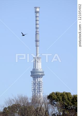 东京晴空塔 观景平台 清澈