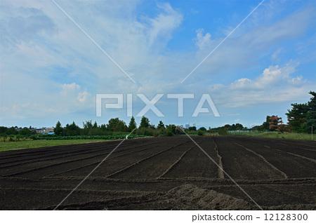 照片 日用品 园艺用品 土 农作地 见沼米田 地球  *pixta限定素材仅在
