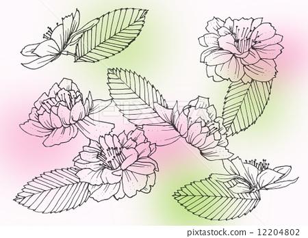 花朵 钢笔划 画线