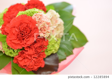 花束 康乃馨 叶子
