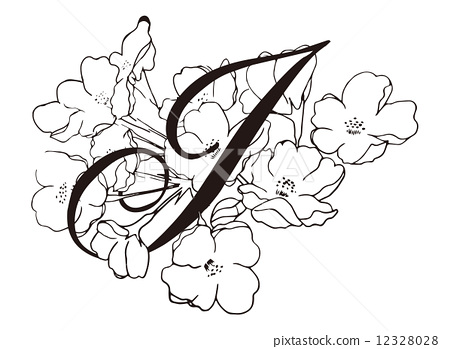 樱桃手绘简笔画