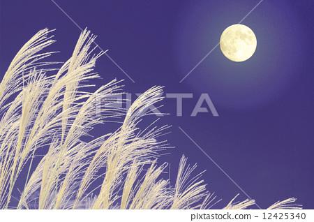 照片素材(图片): 日本蒲苇 月圆之夜 中秋节之夜