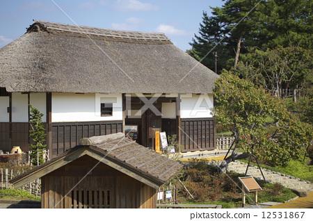 日式房屋 茅草屋顶 木质建筑