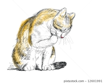 图库插图: 钢笔画 一只动物 水彩画