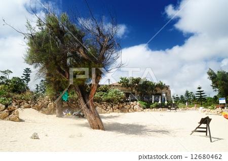 图库照片: 热带景区 海滩 旅游胜地