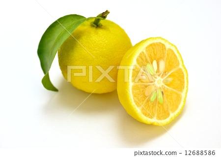 水果 柠檬 照片 切割剪 首页 照片 蔬菜_食品 水果 柠檬 切割剪  *