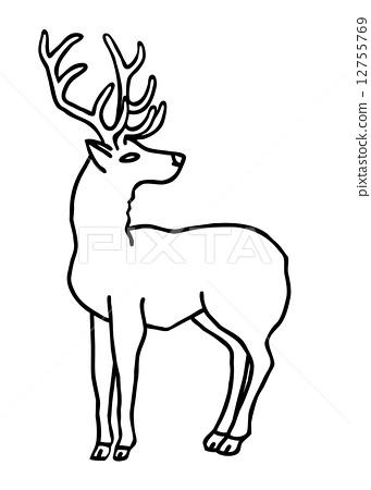 稀有动物 stock 插图