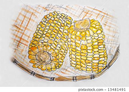 图库插图: 玉米 手绘 筛子