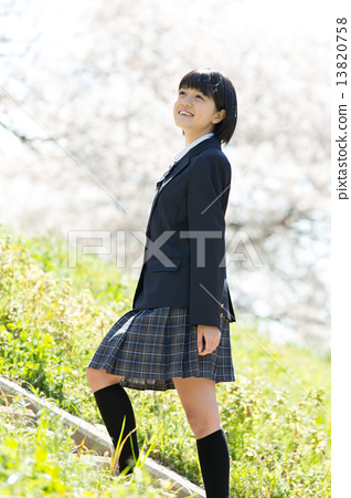 女生 首页 照片 植物_花 樱花 樱花 制服 校服 女生  *pixta限定素材