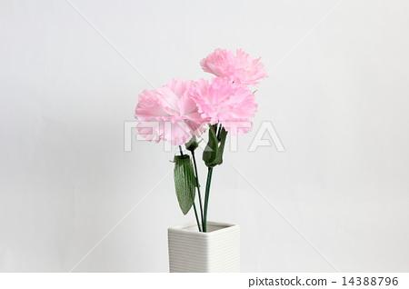 康乃馨 假花 白色背景  pixta限定素材      康乃馨 假花 白色背景