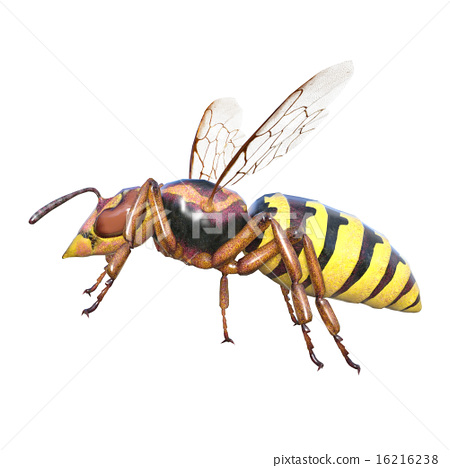HARMFUL INSECTS AND CHANGE THE COLOUR IN ATACK TIME