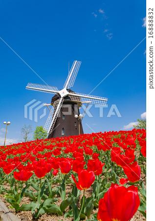 图库照片: 鹤见绿地 风车 风力涡轮机