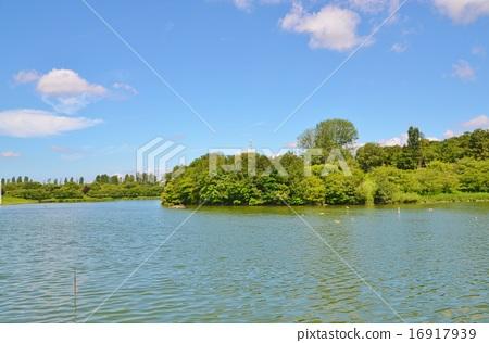 图库照片: 风景 鹤见绿地 清澈