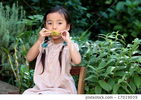 野餐 口琴 首页 照片 人物 女性 女孩 吹 野餐 口琴  *pixta限定素材