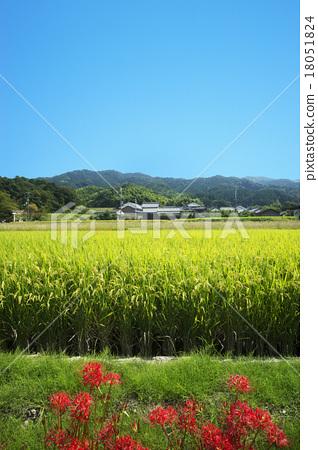 图库照片: 山的路边秋天风景