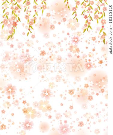 插图素材: 垂枝樱花
