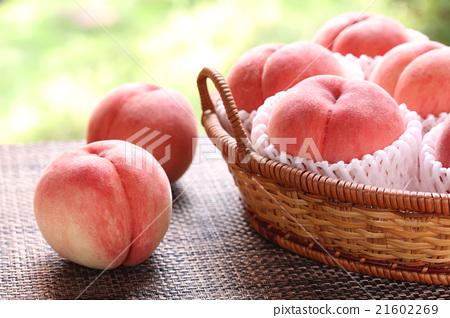 图库照片: 桃子 水果 篮子