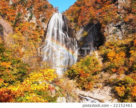 图库照片: 下川瀑布 枫树 枫叶