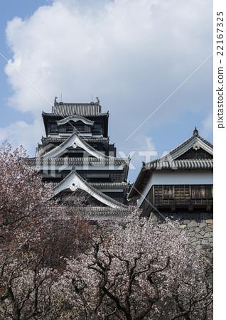 图库照片: 熊本城 日本 熊本县