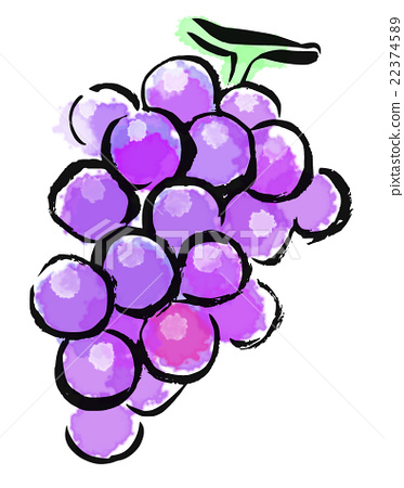 首页 插图 蔬菜_食品 水果 葡萄 插图 毛笔绘画 水果  *pixta限定素材