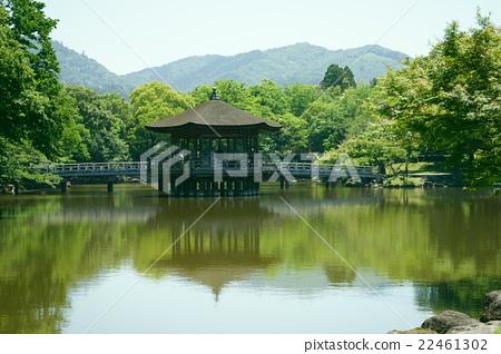 图库照片: 奈良公园 友奇大厅 风景