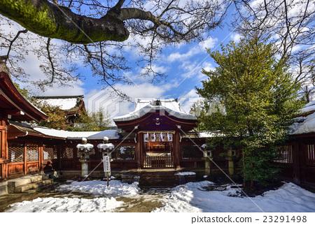 首页 照片 风景_自然 季节 冬 丰国神社 主殿区 冬天  *pixta限定素材