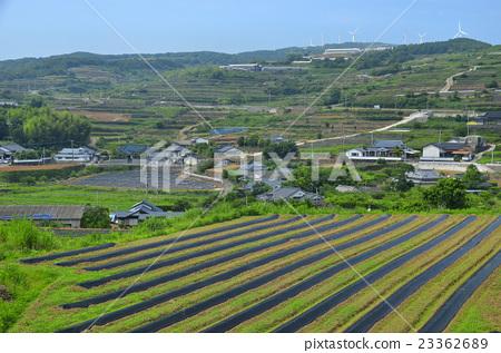 图库照片: 鹿儿岛县 长岛 风景