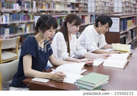 图库照片: 大学生 学习 图书馆