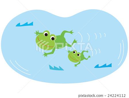 图库插图: 青蛙 游泳 矢量图片