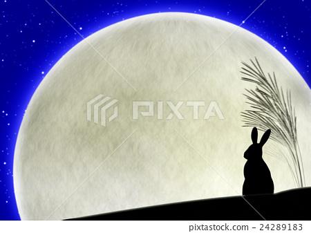 插图素材: 野兔 日本蒲苇 月亮
