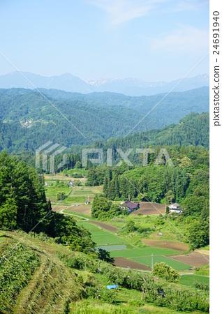 图库照片: 小川 农村 风景