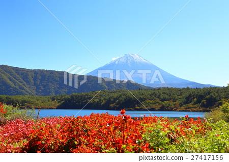 图库照片: 富士山 小柴胡汤湖 秋天