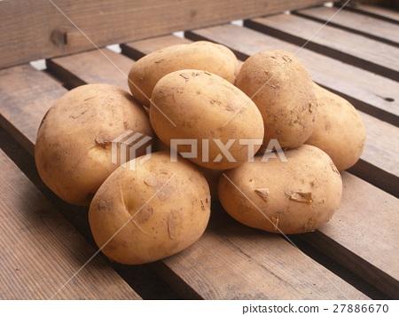 图库照片: 土豆 马铃薯 芋头图片