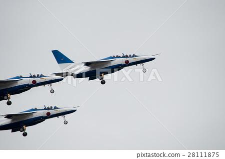 昆虫_虫子 苍蝇 蓝色冲击波 教练机 飞机  *pixta限定素材仅在pixta