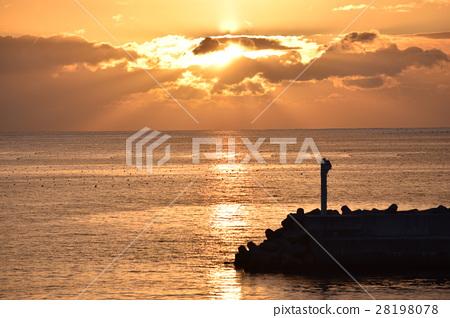 图库照片: 日出 海洋 海