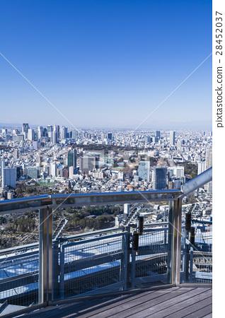 图库照片: 从观景台看的东京都市风景