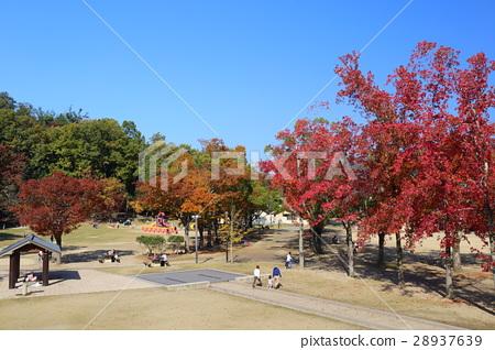 图库照片: 京都秋天宝池公园儿童乐园