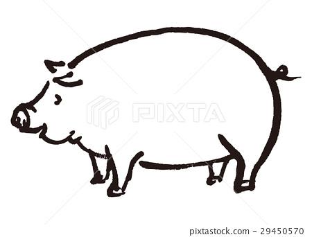 图库插图: 猪 水彩画 水墨画图片