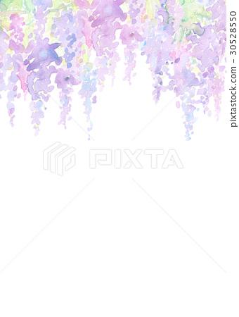 插图素材: 水彩紫藤花纹理