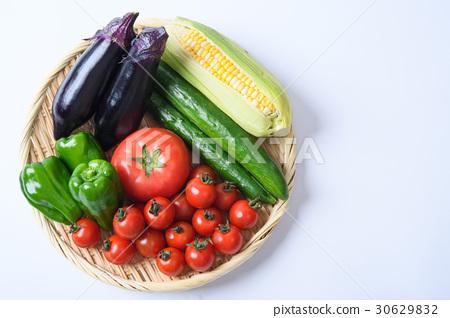 图库照片: 茄子 黄瓜 西红柿