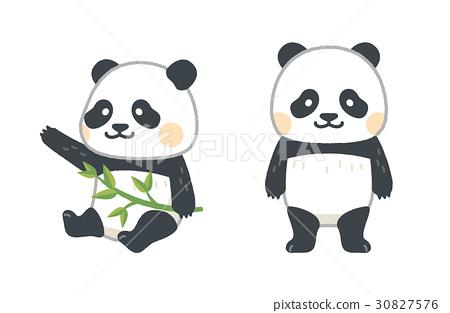 图库插图: 熊猫 动物 矢量
