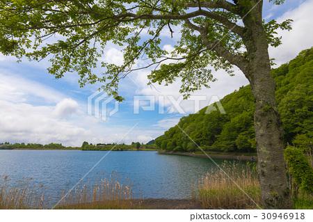 首页 照片 人物 男女 日本人 狸子湖 湖岸边 湖畔  *pixta限定素材仅