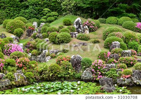 图库照片: 风景公园 日本园林 日式花园