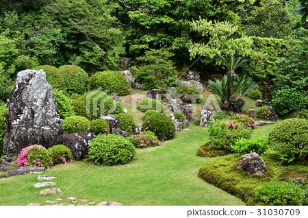 图库照片: 花园 风景公园 日本园林