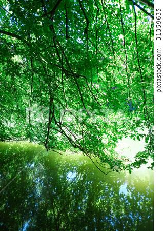 年轻人 照片 风景 自然 户外 首页 照片 人物 男女 年轻人 风景 自然
