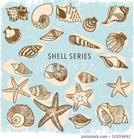 图库插图: 海边 贝壳 海星